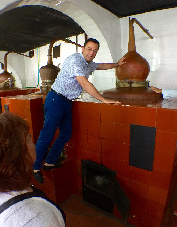 GM Adolfo passionately talking about the still