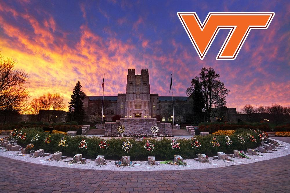 Logo - VT School.jpg