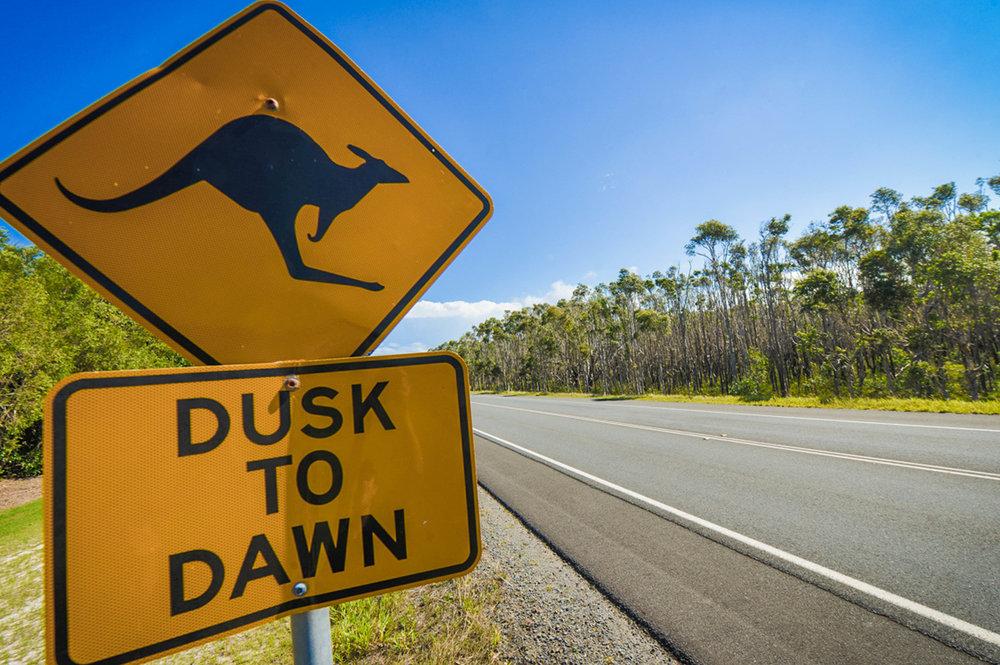 Australia Roadside