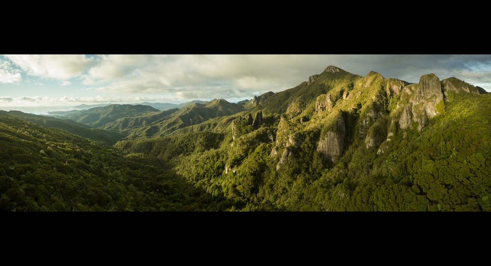 Windy Canyon, Great Barrier Island. Photo: Glenn McLelland,  Aerial Vision .