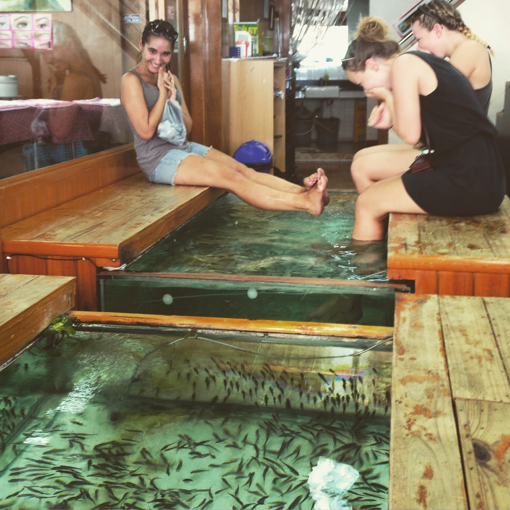 Thai beauty therapy - tiny fish nibbling your dry dead foot skin away. Ticklish folk be wary.