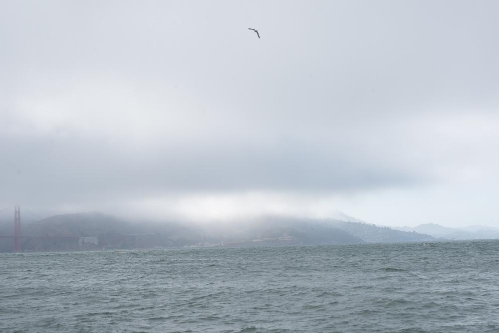 Feeling misty.