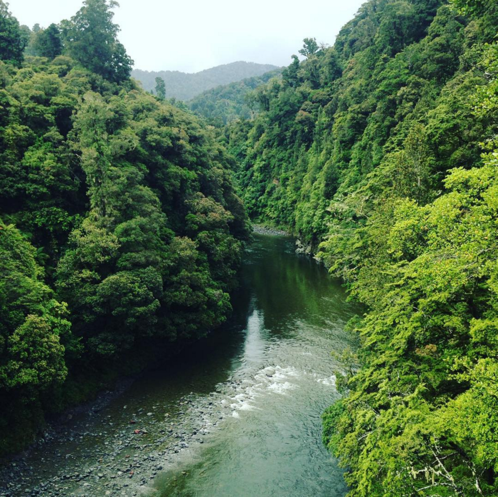 The Waiohine Gorge
