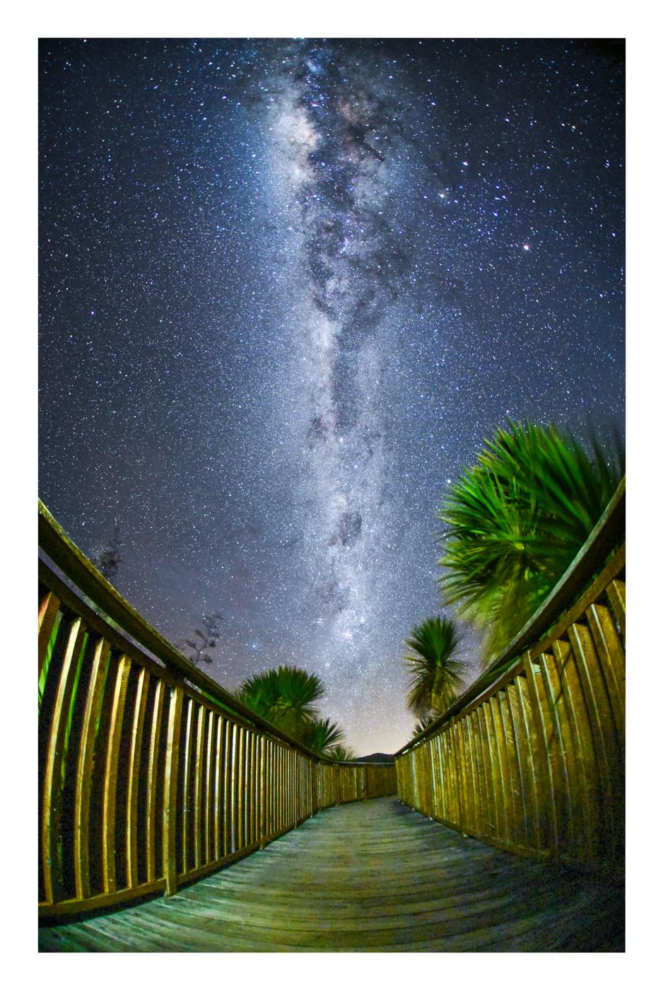 StarsWebRes-4.jpg