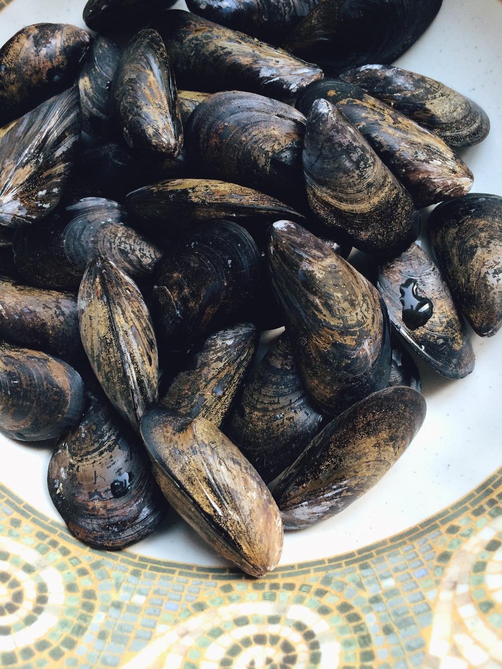 Mussels #foodbymars