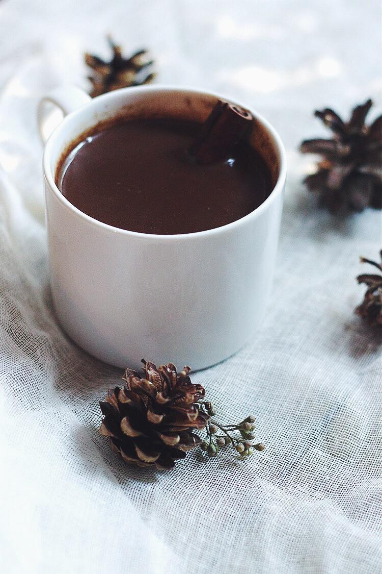 Hot Chocolate with Cinnamon #foodbymars #lactosefree #dairyfree