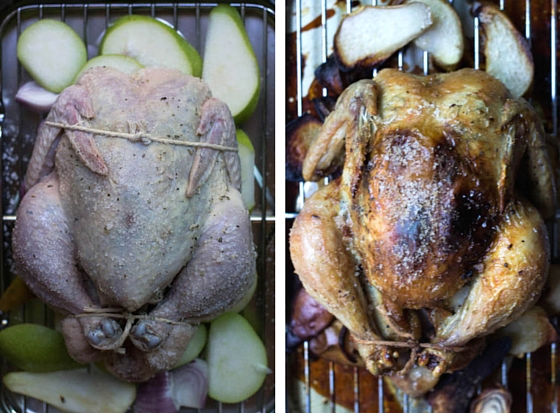 Provençal Roasted Chicken with Pears & Shallots (PLUS a WOLF Gourmet Countertop Oven Giveaway!) via Food by Mars