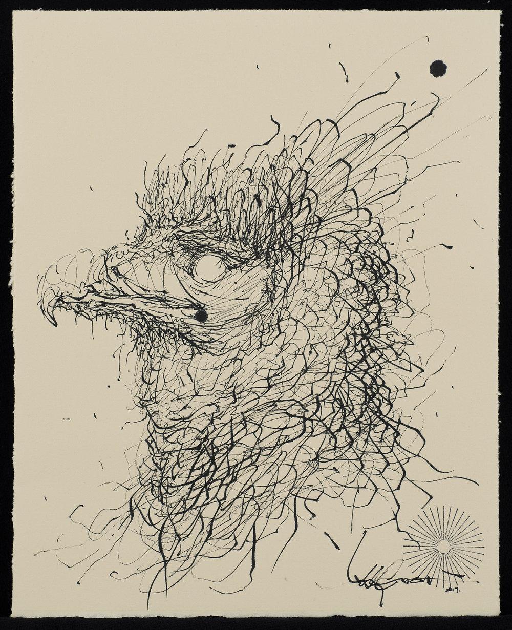 Vulture-2500px.jpg