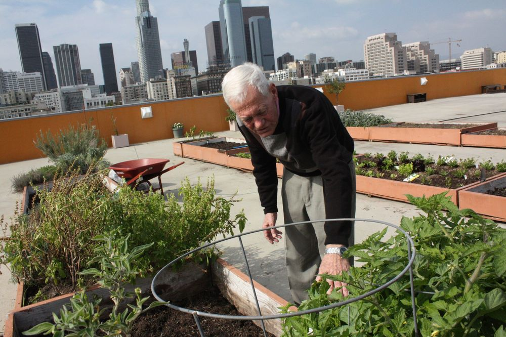 Michael on the rooftop garden at the mission where he currently lives and works.