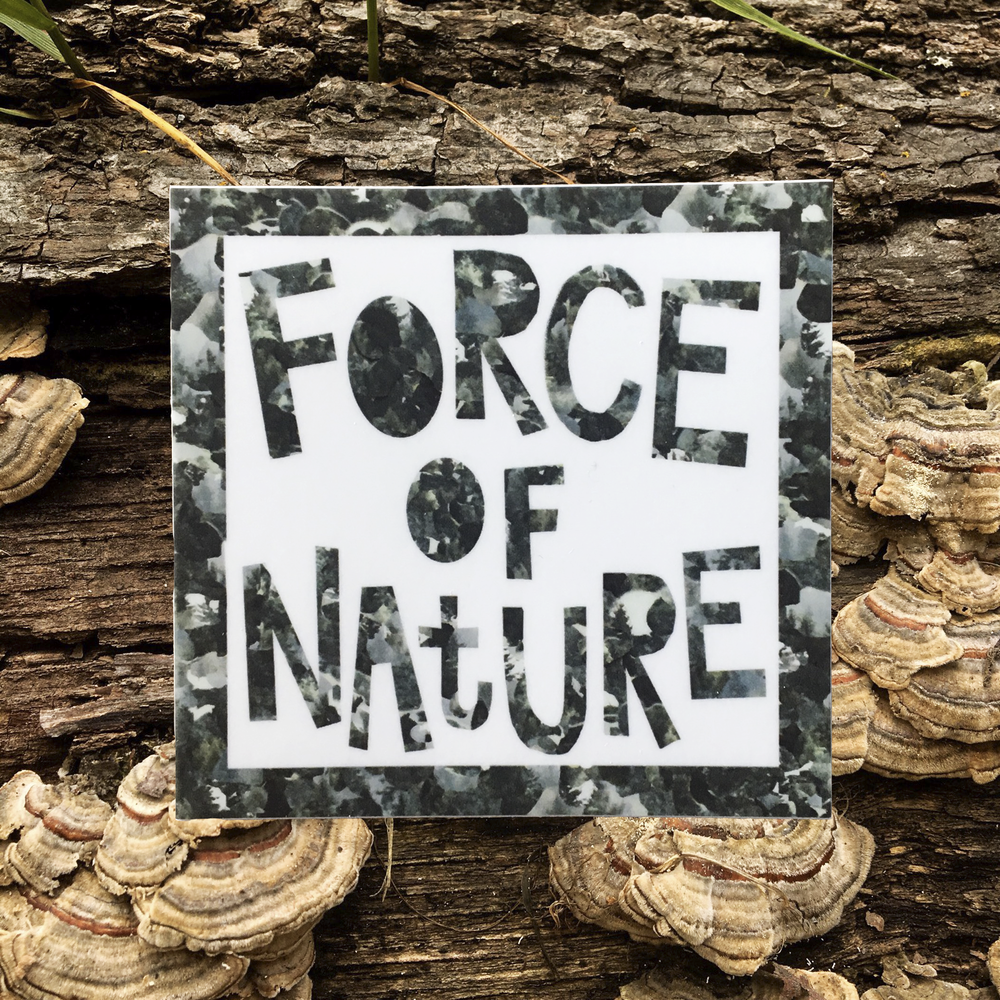 force of nature product photo.png