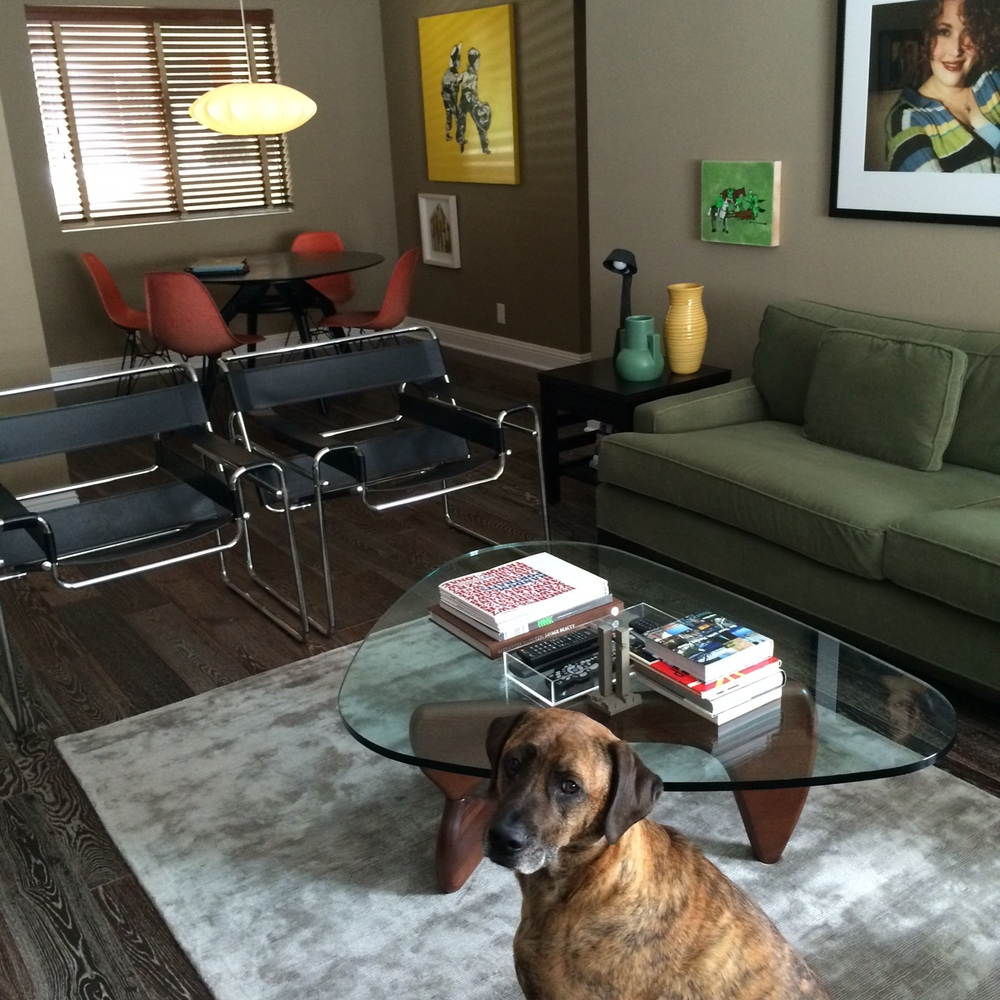 Michael's cool living room and adorable dog Roman, named after his favorite director, Roman Polanski.