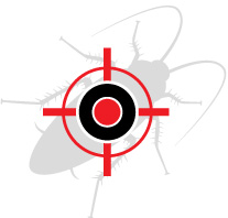 PestXpert cockroach target