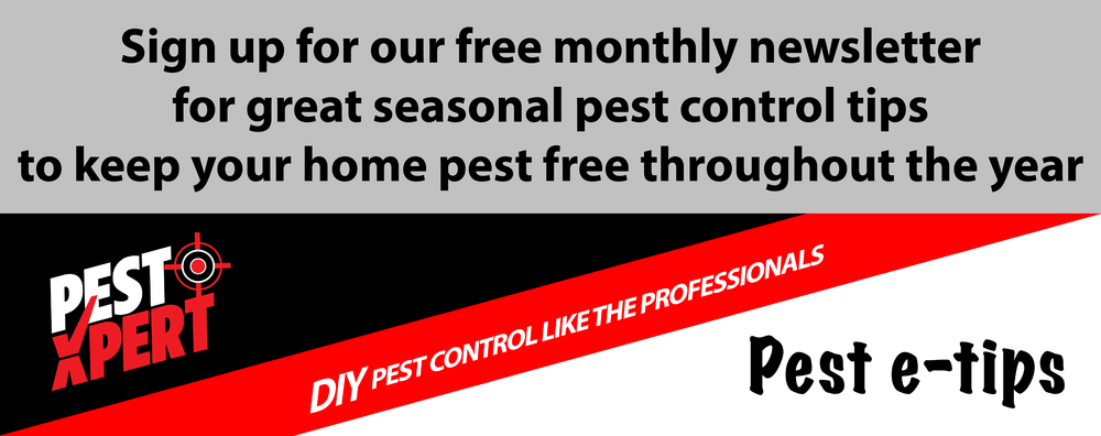 PestXpert Newsletter
