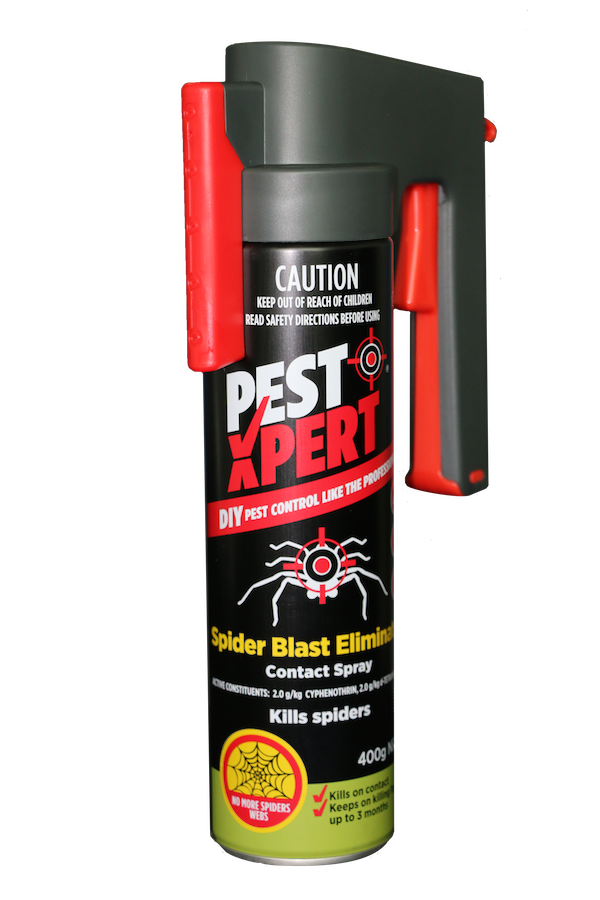 PestXPert spider blast eliminator contact spray