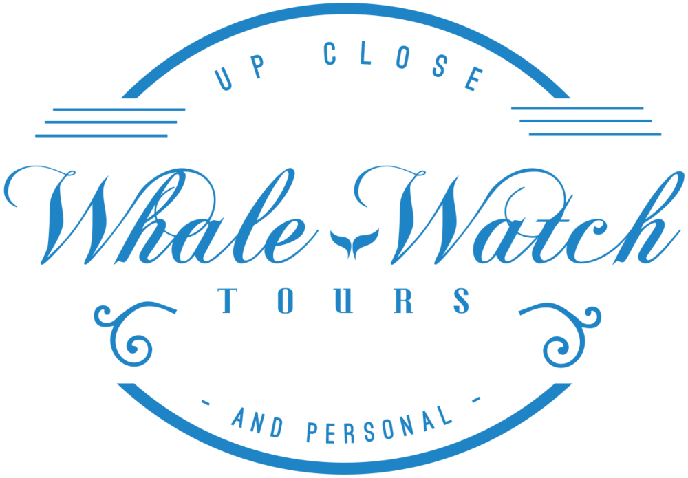 Whale-Watch-blue.png