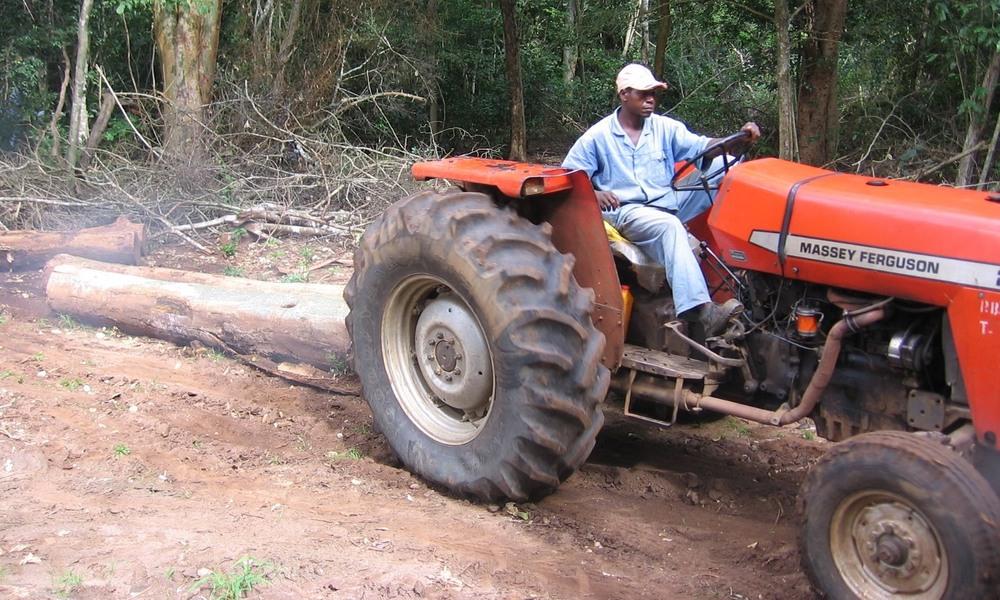 Extracção com máquinas agrícolas de pequenas dimensões para minimizar o impacto  -  Extraction using small agricultural tractors to minimise impact