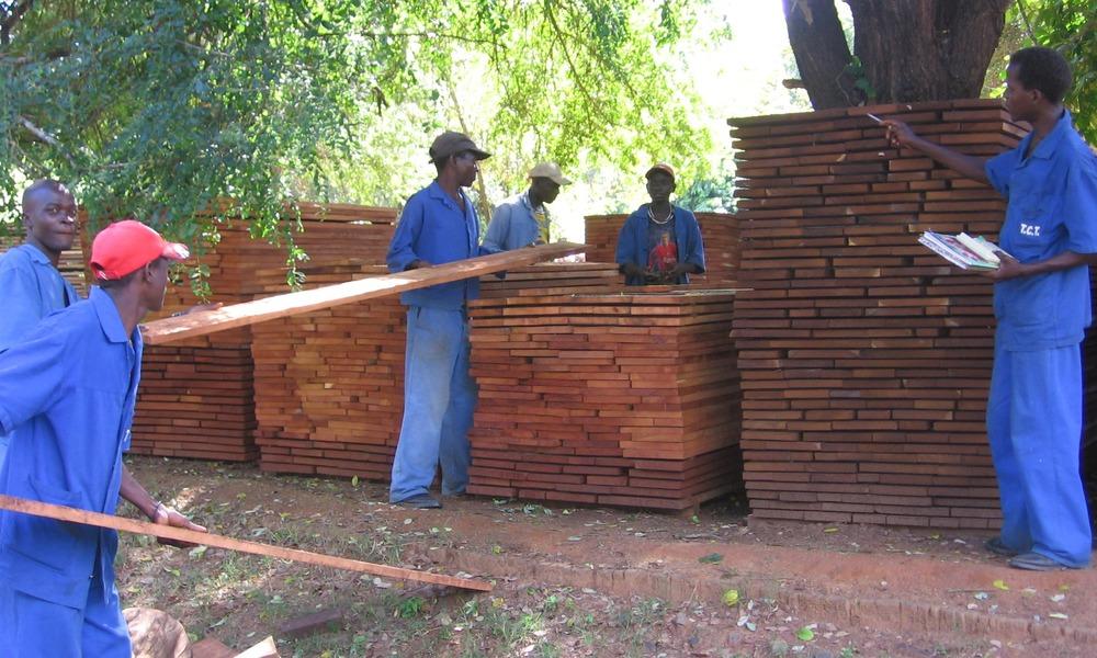 1º grau, placas secas em estufa prontas para serem comercializadas -1st grade, kiln dried planks ready for market