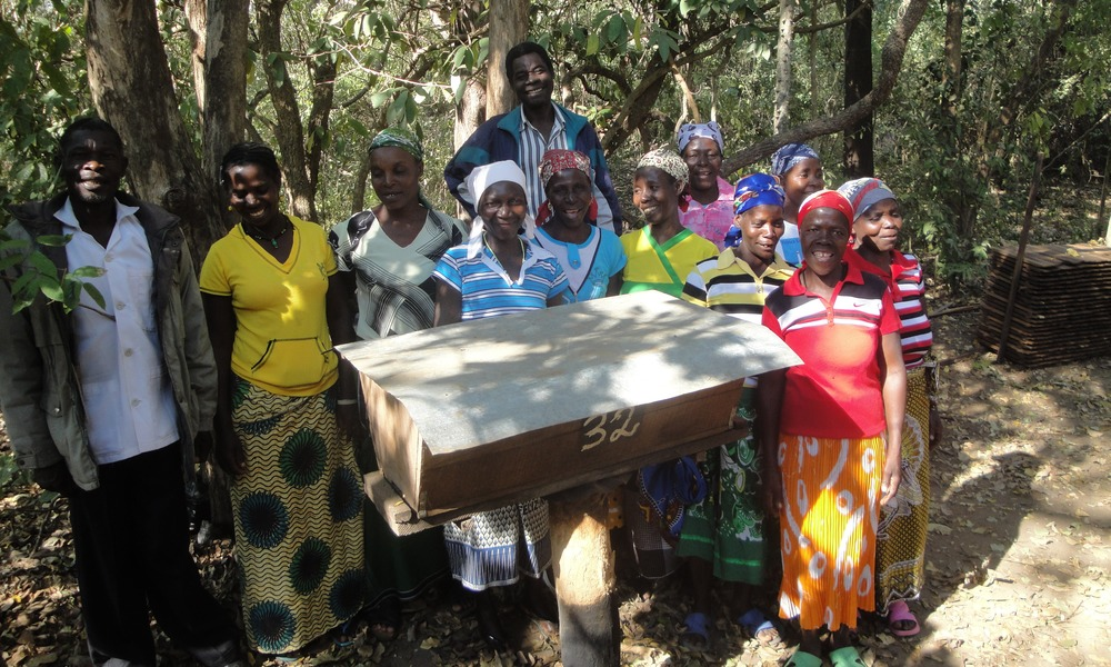 Ensinar as comunidades e vizinhos a trabalharem em conjunto para o bem comum do apiário-Teaching communities and neighbours to work together for the common good of the apiary.