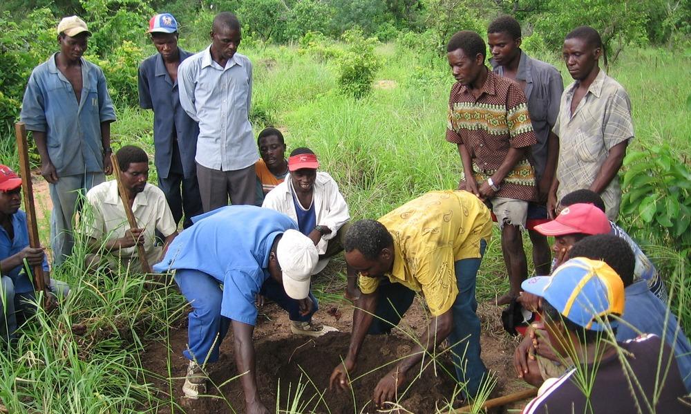 Formação para a comunidade  - Community training