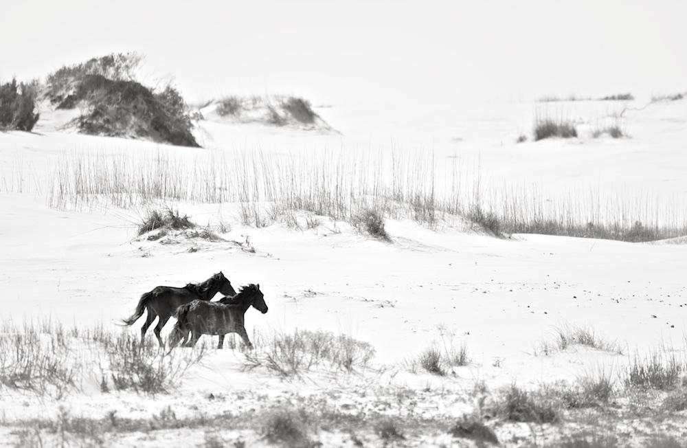 AnoukMassonKrantz©Tryst, 2011.jpg