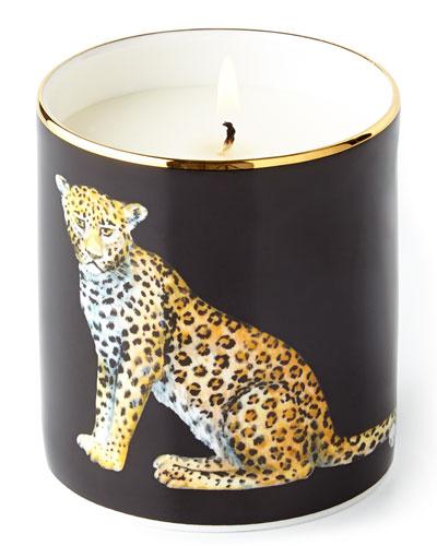 Leopard home -halcion days nm.jpg