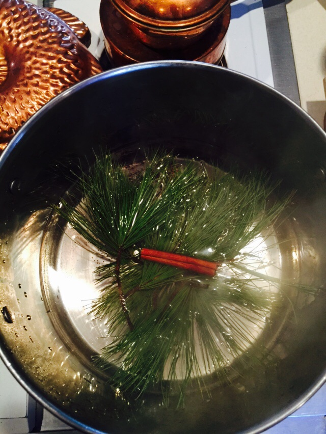Why simmering water on the stove is good for mind, body and home Image property of Jessica Gordon Ryan, taken with an iPhone 6