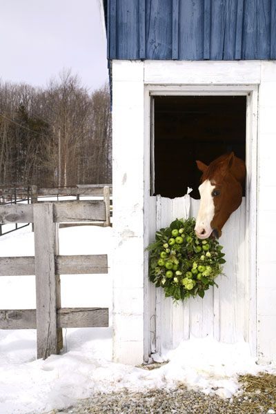 Equestrian Christmas Decor Image via Robin Stuttart