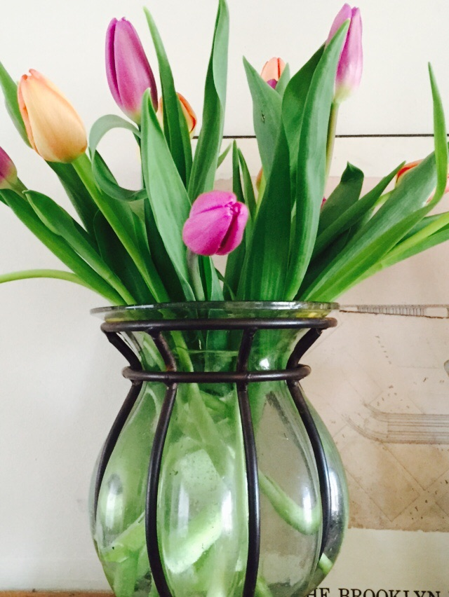 Pastel peach and lavender tulips add warmth and softness to my mantel. Image Jessica Gordon Ryan via iPhone6