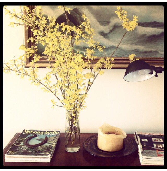 A few weeks later I decided to cut down some bare forsythia branches and bring them indoors. After about 5 days they started to bud. Yellow, really is the happiest of color, isn't it? Image, Jessica Gordon Ryan - iPhone4s