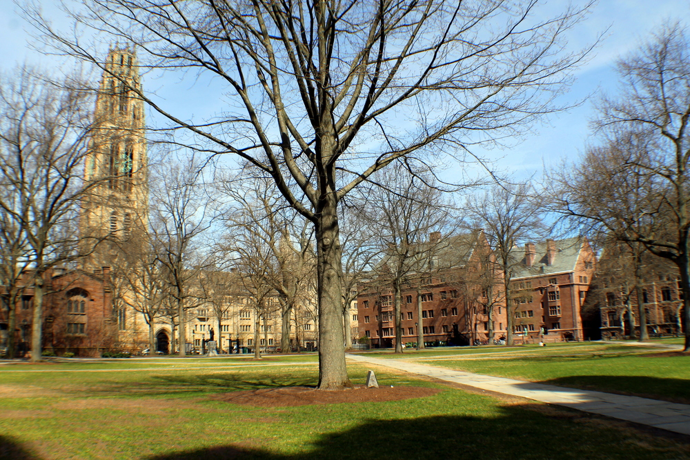 Yale University, Memorial Quadrangle, Old Campus. Image property of Jessica Gordon Ryan