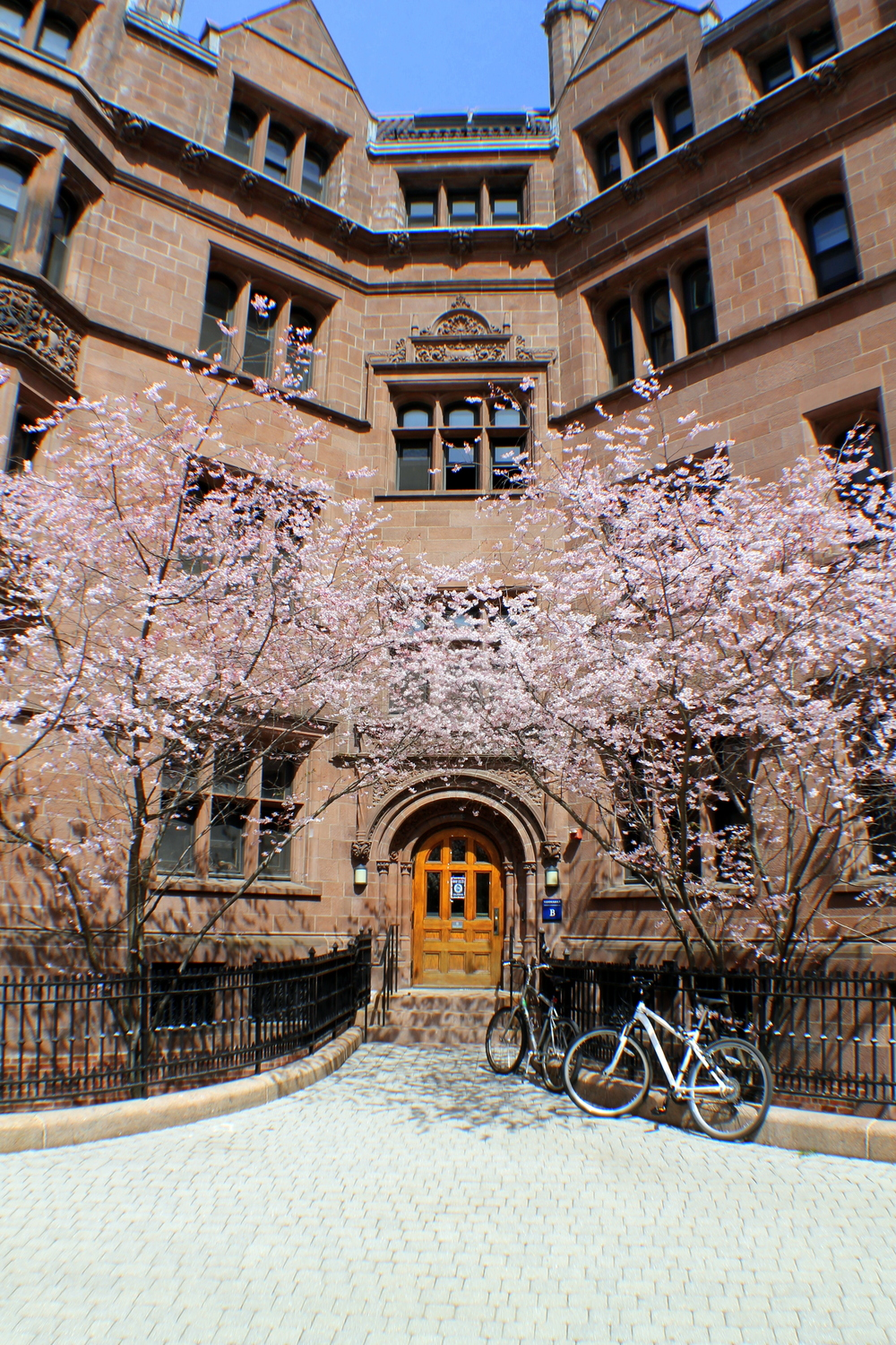 Yale University  . Vanderbilt Hall  quad. I  mage property Jessica Gordon Ryan