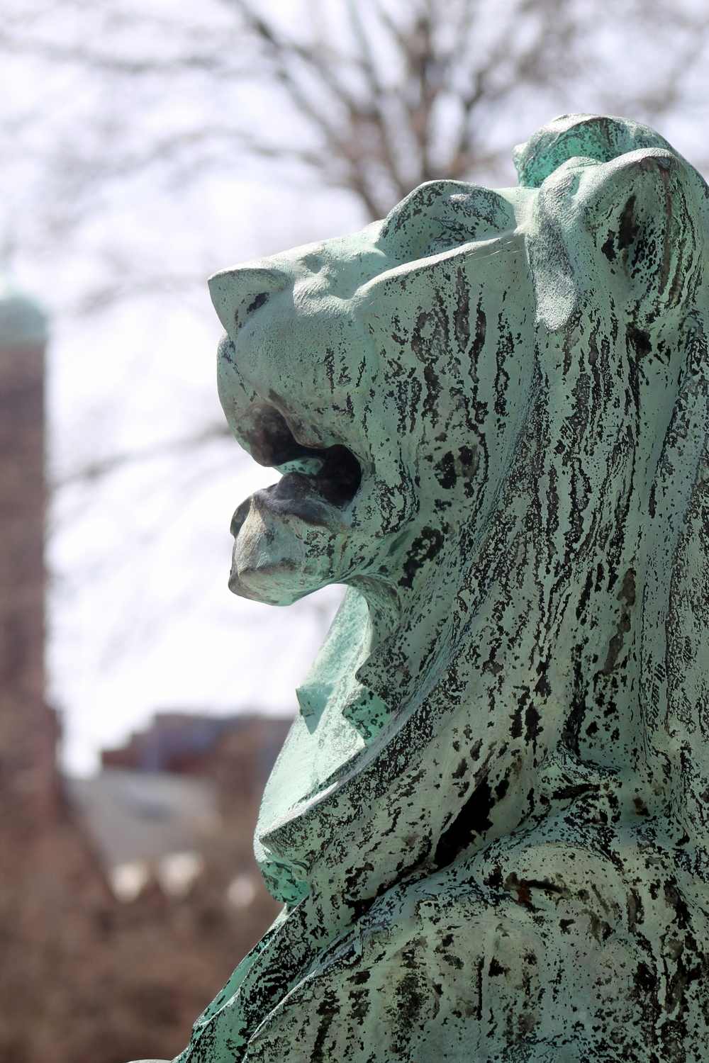 Statue Detail. Bronze Lion. Yale University. Image property of Jessica Gordon Ryan