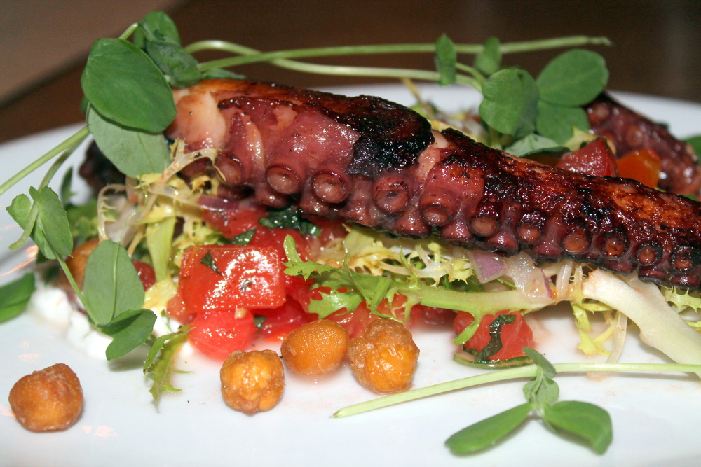 Saltaire Oyster Bar and Fish House :: Grilled Spanish Octopus