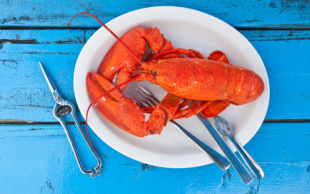 How to Eat Like you are in New England (Image via Travel & Leisure)