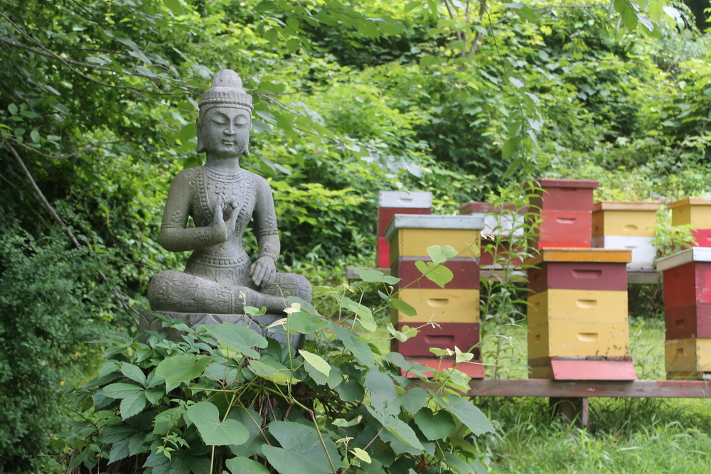 Redbee :: Saving the world one honeybee at a time. Image property of Jessica Gordon Ryan/The Entertaining House
