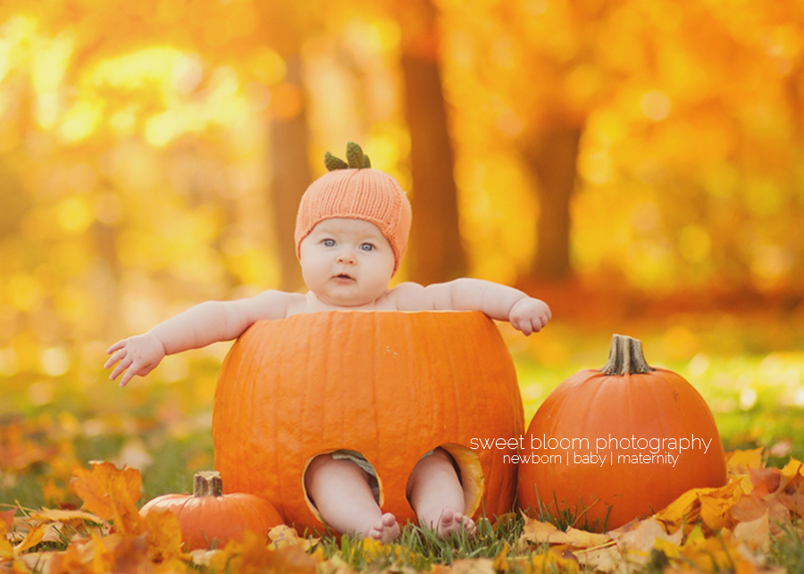dayton ohio fall mini sessions baby in a pumpkin 2.jpg