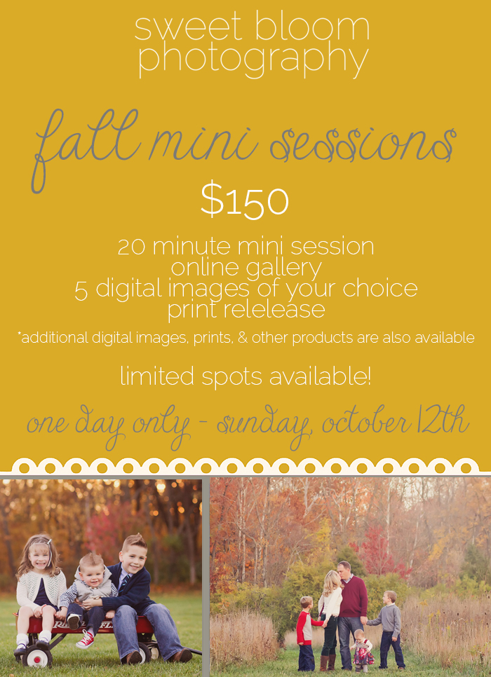 dayton ohio fall mini sessions cincinnati fall mini sessions 2014 2.jpg