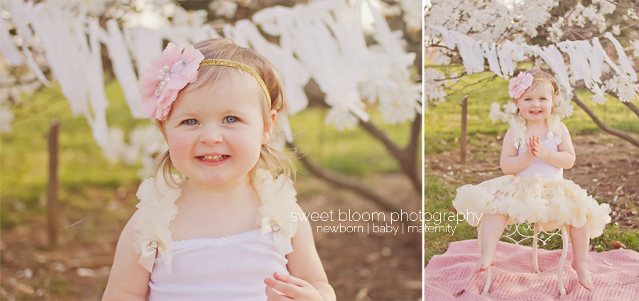 cincinnati ohio baby photographer bridget 2 years 4.jpg