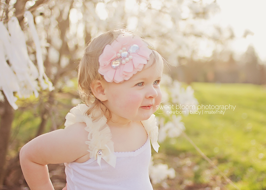 springboro ohio baby photographer bridget 2nd birthday 5.jpg