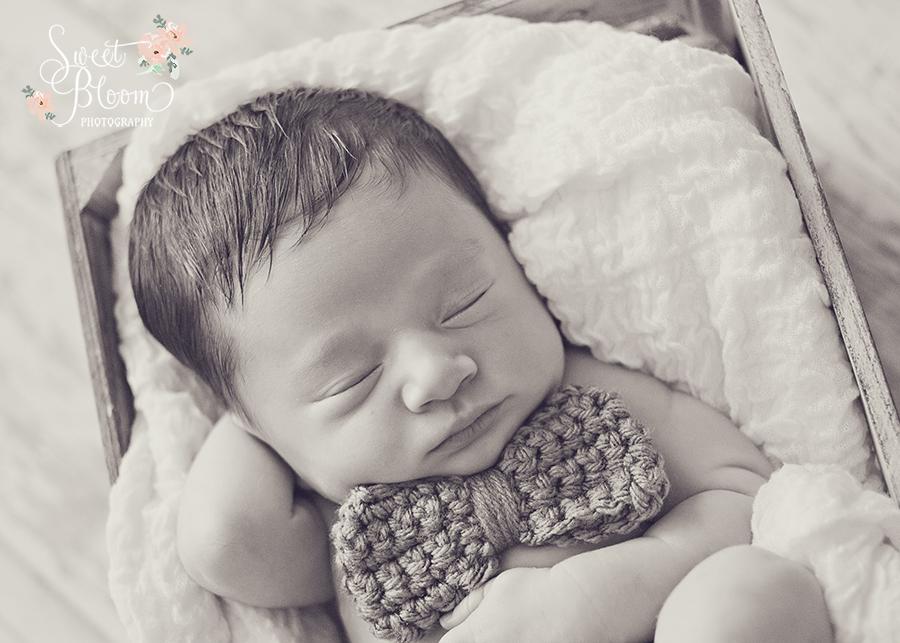 cincinnati ohio newborn photography studio beckett 11.jpg