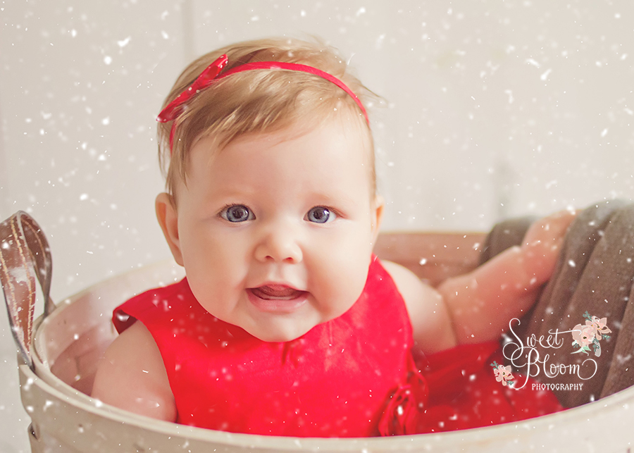 cincinnati ohio christmas mini sessions everly 1.jpg