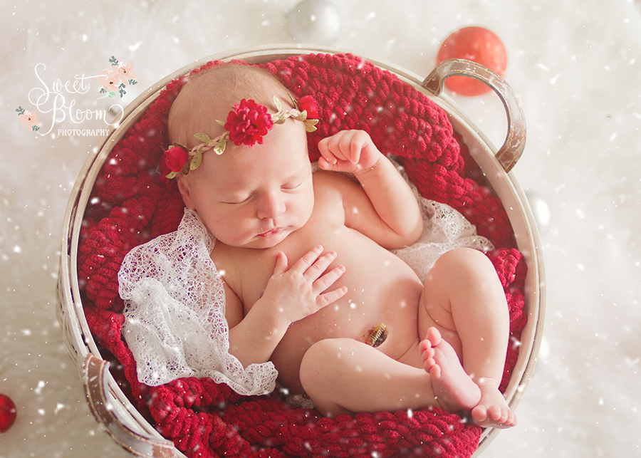 cincinnati ohio newborn photography studio emma christmas.jpg