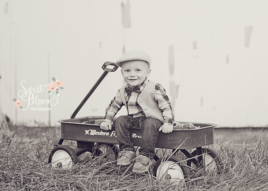 dayton ohio baby photography william 18 months session.jpg