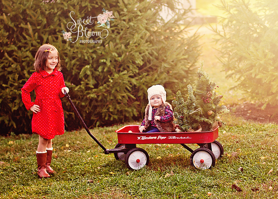 dayton ohio christmas mini sessions tree farm sophia 2.jpg