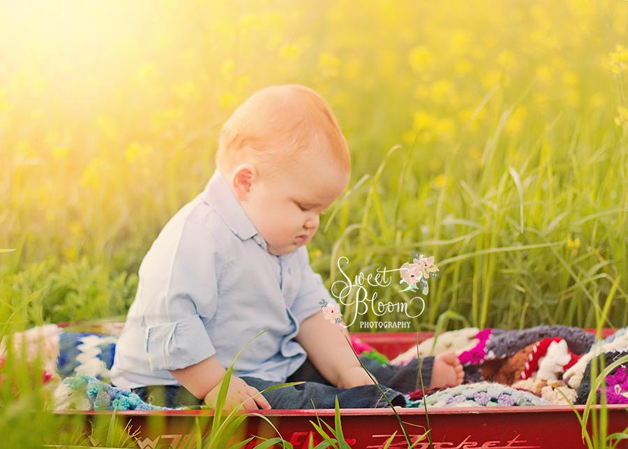Cincinnati Ohio Baby Photography | Sweet Bloom Photography | www.sweetbloomphotography.com