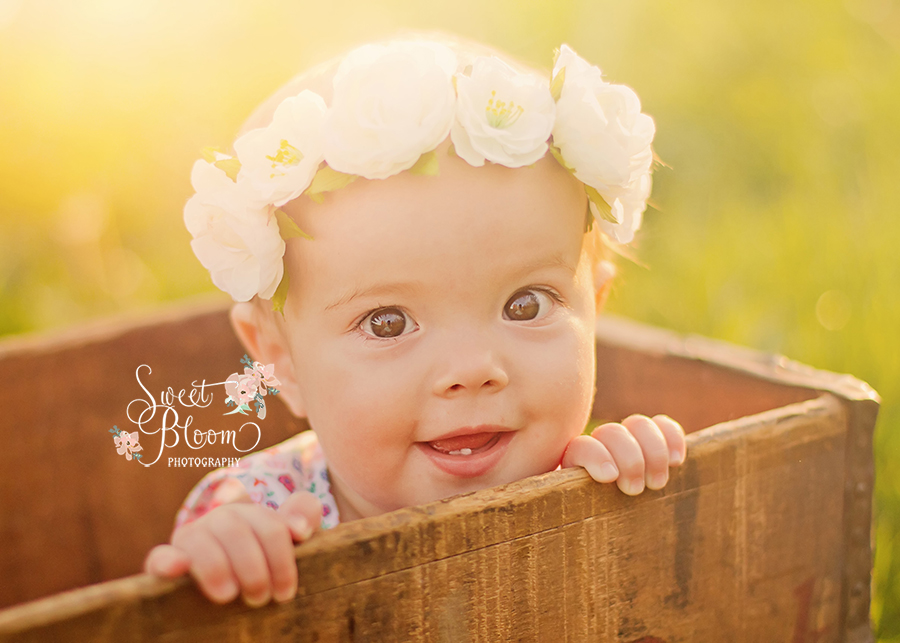 Dayton Ohio Baby Photography 1st Birthday Session | Sweet Bloom Photography | www.sweetbloomphotography.com