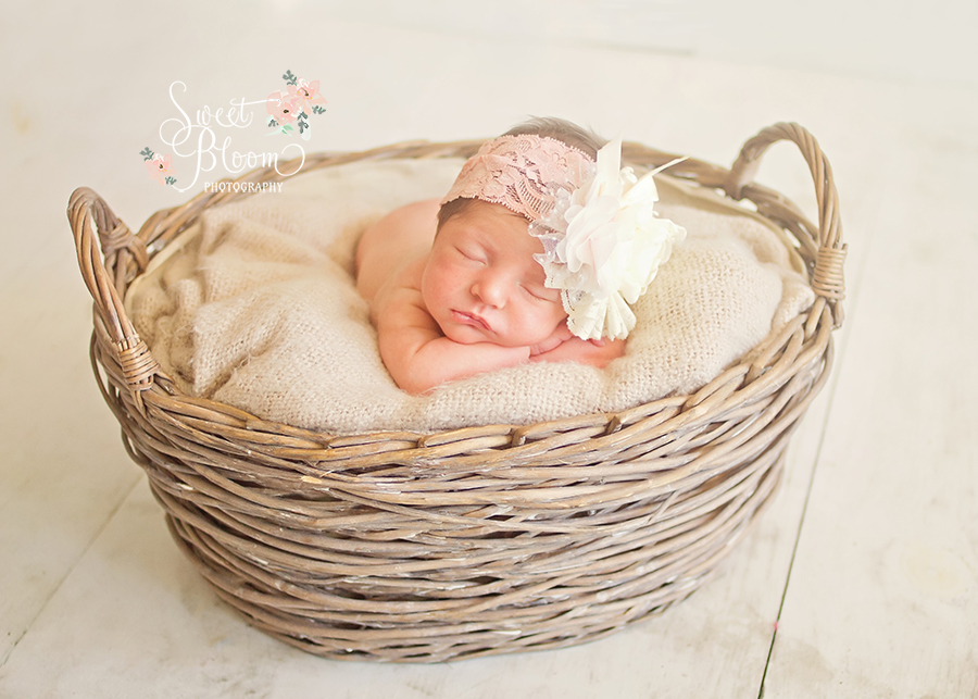 Cincinnati Ohio Newborn Photography Studio | Sweet Bloom Photography | www.sweetbloomphotography.com