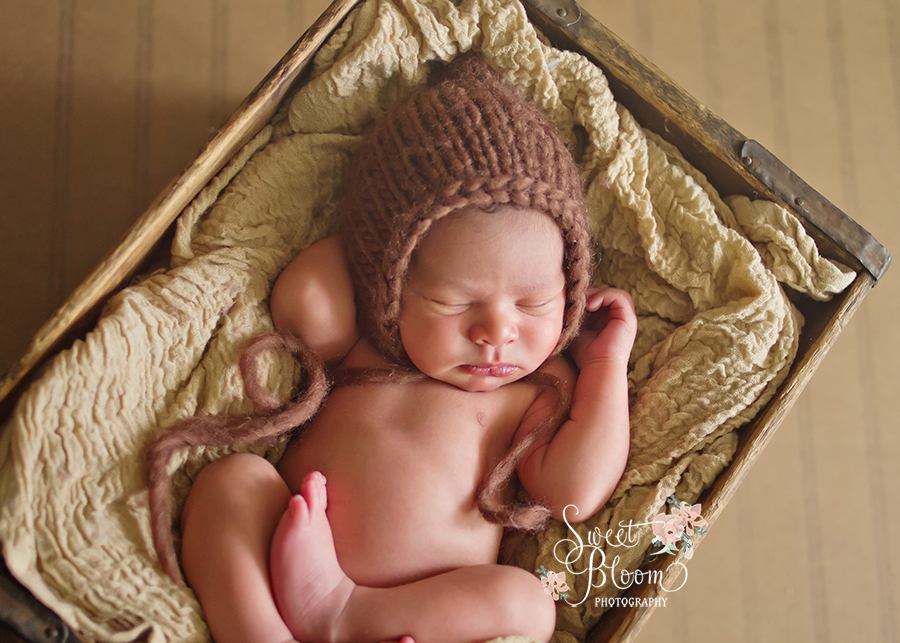 Oakwood Ohio Newborn Photographer | Sweet Bloom Photography | www.sweetbloomphotography.com