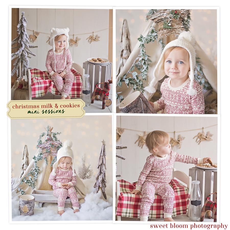 Dayton Ohio Christmas Mini Sessions | Sweet Bloom Photography | www.sweetbloomphotography.com