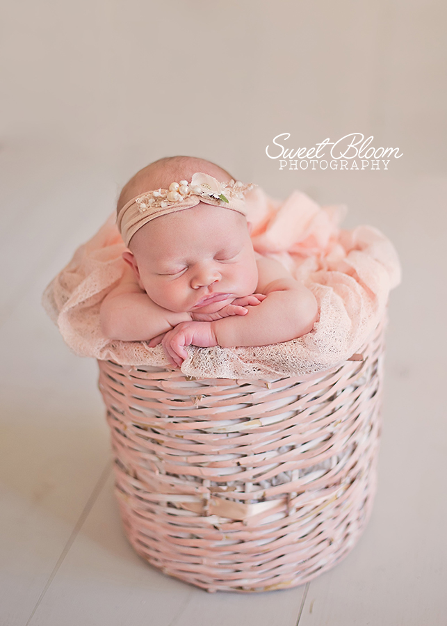 Dayton Ohio Newborn Photographer | Sweet Bloom Photography | www.sweetbloomphotography.com